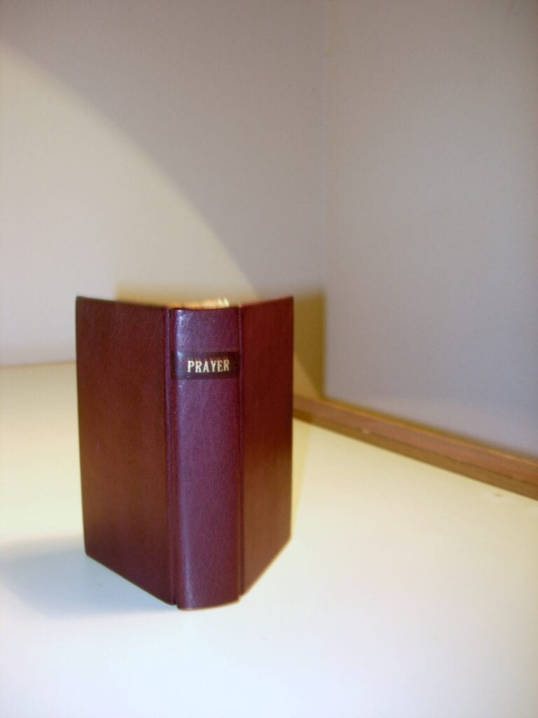 cloth bound book rebound in leather
